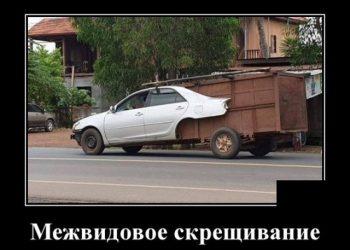 Подборка свежих демотиваторов на PAGGY.RU
