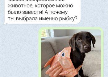 Скриншоты апрельского юмора из социальных сетей (35 фото)