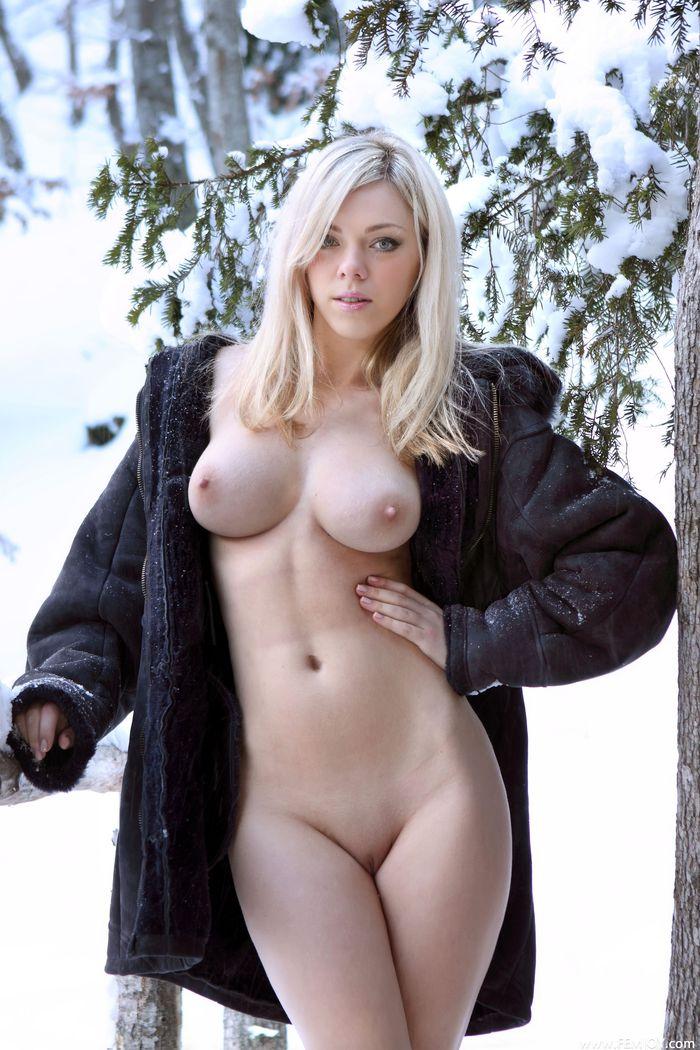 в русском заснеженном лесу зимой