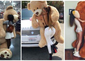 9 причин почему девушки любят огромных плюшевых медведей (20фото)