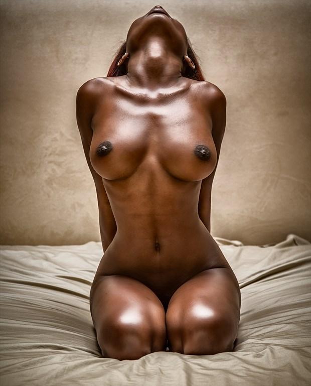 Прекрасное фото обнаженной негритянки