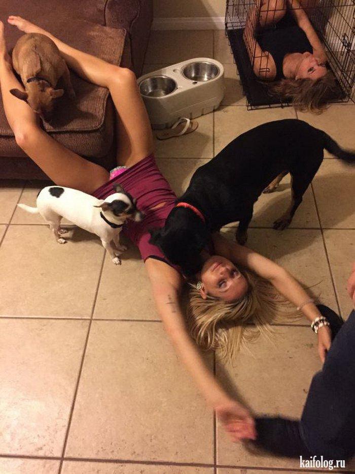 Пьяная девка с задранной юбкой спит на полу и ее облизывают собаки